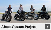 About Custom Project